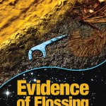 Blog Tour - Evidence of Flossing: What We Leave Behind