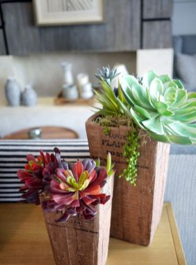 manandvin-at-thelandsby-succulent