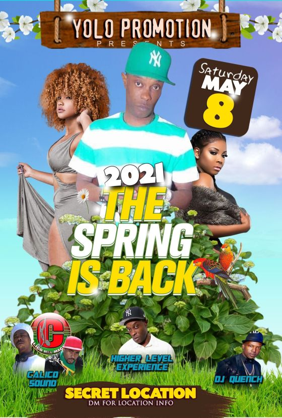 the_spring_is_back