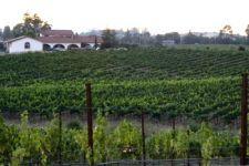 Foppoli Wines