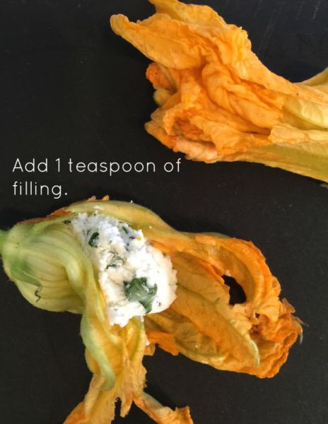 Stuffing a squash blossom with cheese.