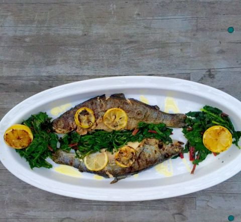 Summer Grilled Trout
