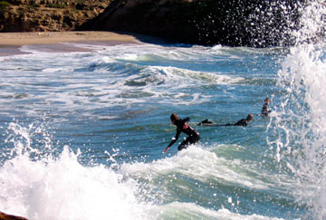 mejores playas surf california