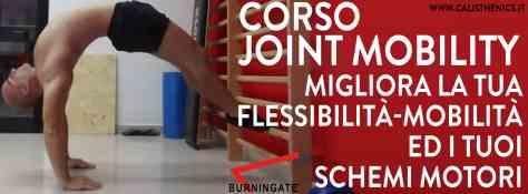 corso-calisthenics-joint-mobility-mobilità-articolare
