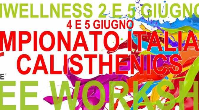 Rimini Wellness 2016: il Calisthenics Grande Protagonista