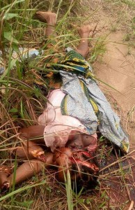 The corpse found in the farm