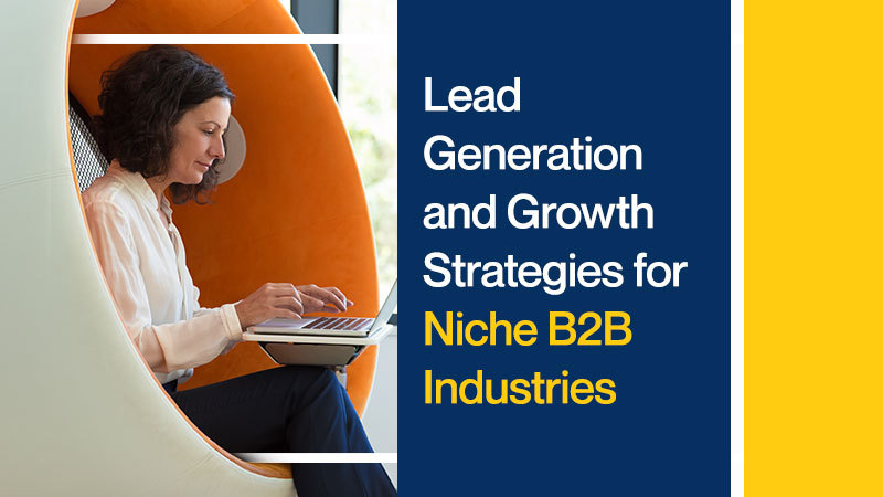 Lead-Generation-and-Growth-Strategies-for-Niche-B2B-Industries