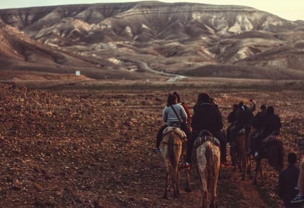 Trek across the desert