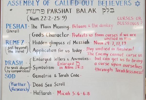 39 - Parashah Balak whiteboard