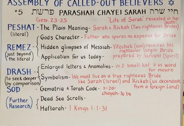 Chayei Sarah whiteboard