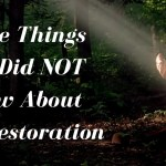 Three Things You Did NOT Know About The Restoration
