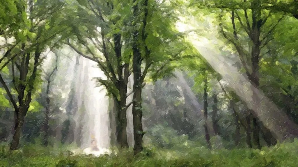 restoration oaks