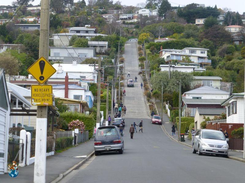 Calle Baldwin - Dunedin