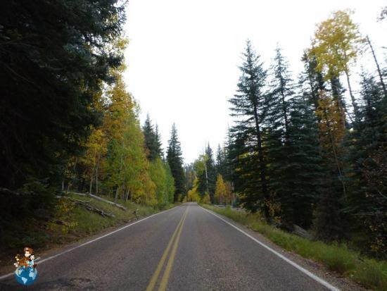 Entrada Parque Nacional Gran Cañón - Zona Norte