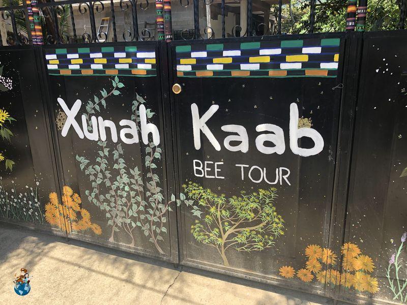 Granja de abejas Kunah Kaab' en San Juan La Laguna