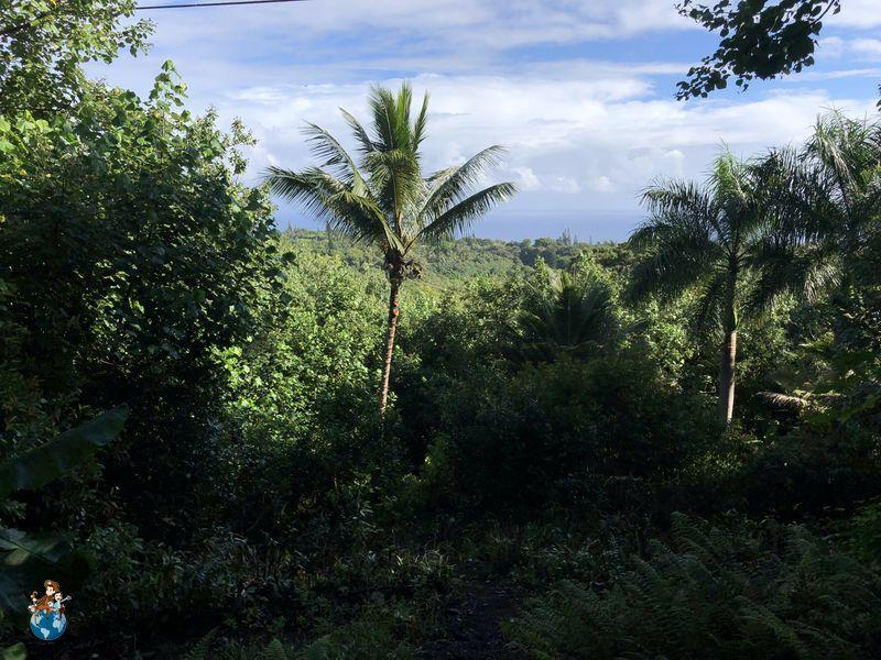 Huelo Lookout Point en la Carretera de Hana