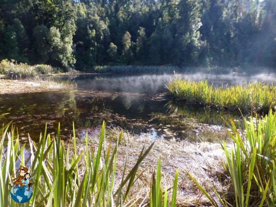 Rodeando el Lago Matheson