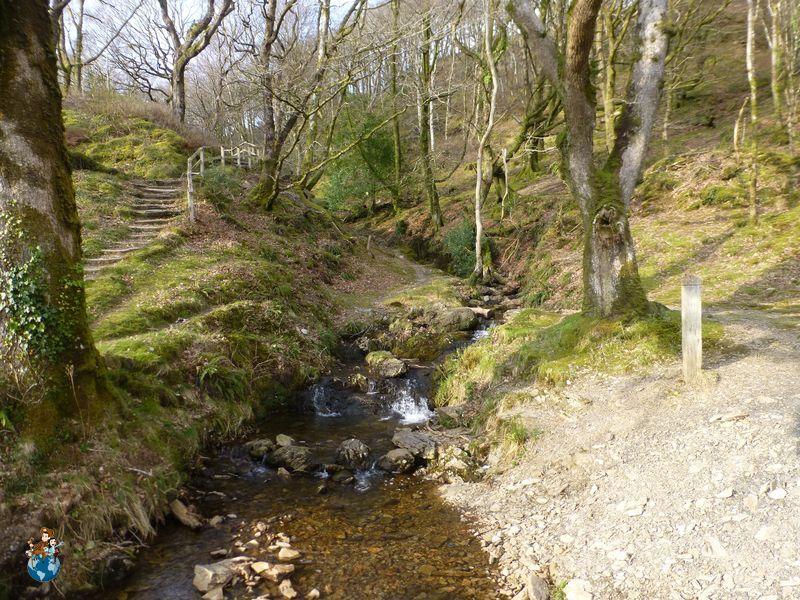 Llyn Mair Lake - Parque Nacional Snowdonia