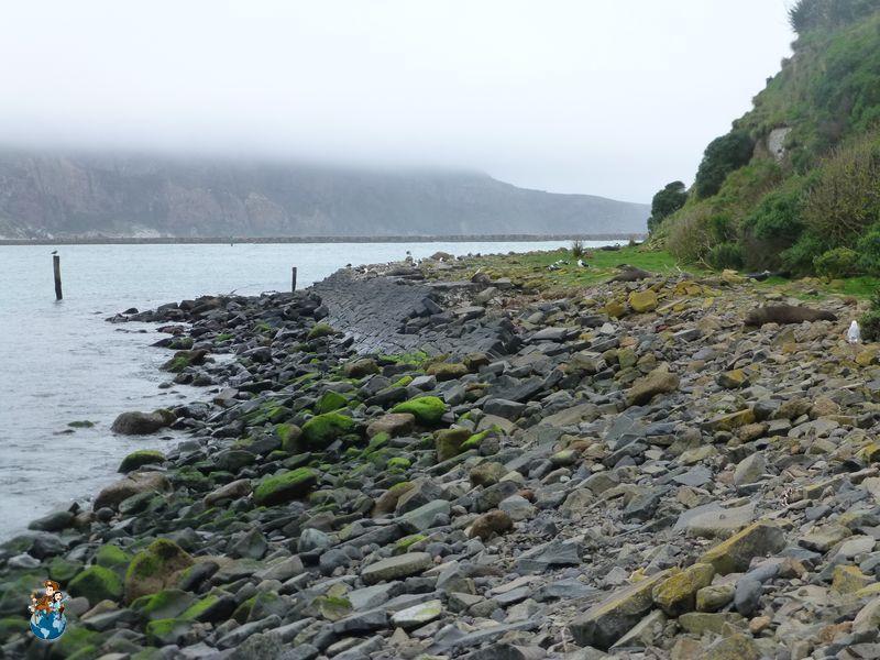 Playa de Pukekura