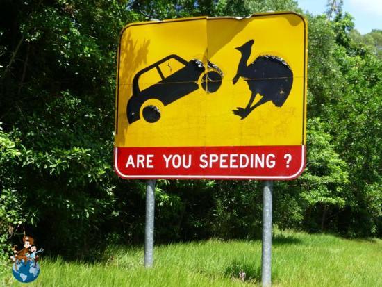 Conducir en Australia