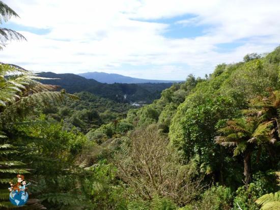 Valle volcánico Waimangu