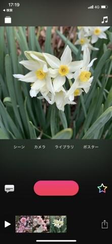 IMG 3074