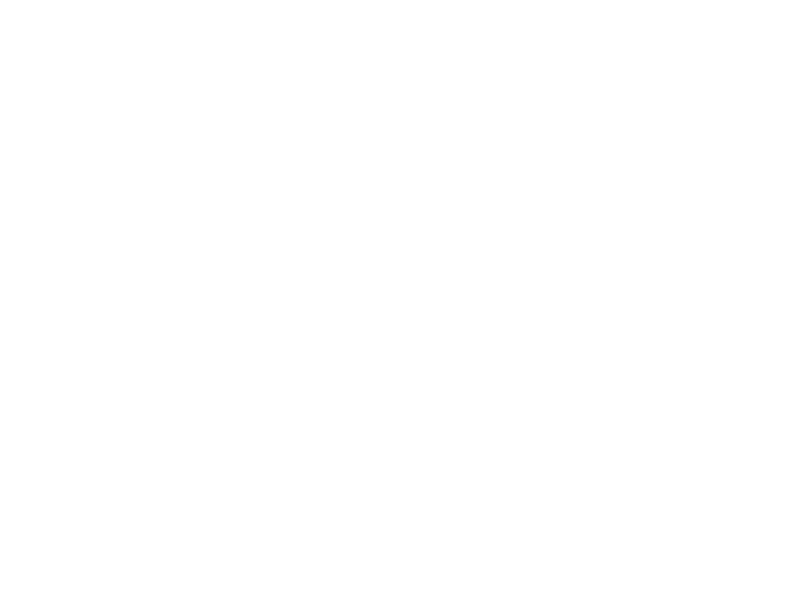 roi logo wit png homepage
