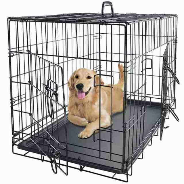 First close looking view of the Best Dog Crate