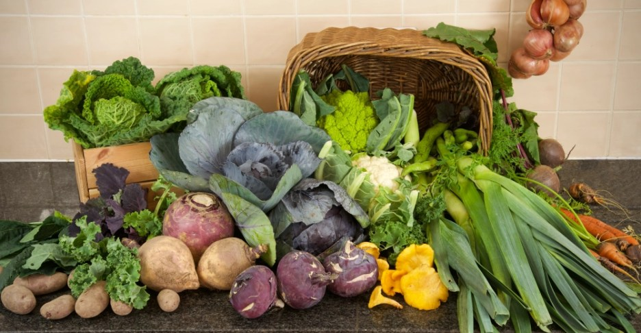 a selection of vegetables for The 100-Mile Diet Locavore Challenge March 2020