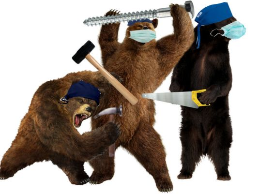 three ortho bears
