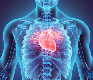 Long-term exposure to air pollution increase risk of cardiac and lung diseases
