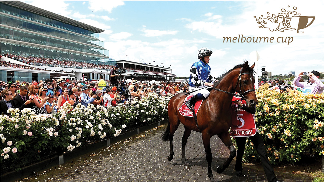 Melbourne Cup Racing Caloundra Sports Bar