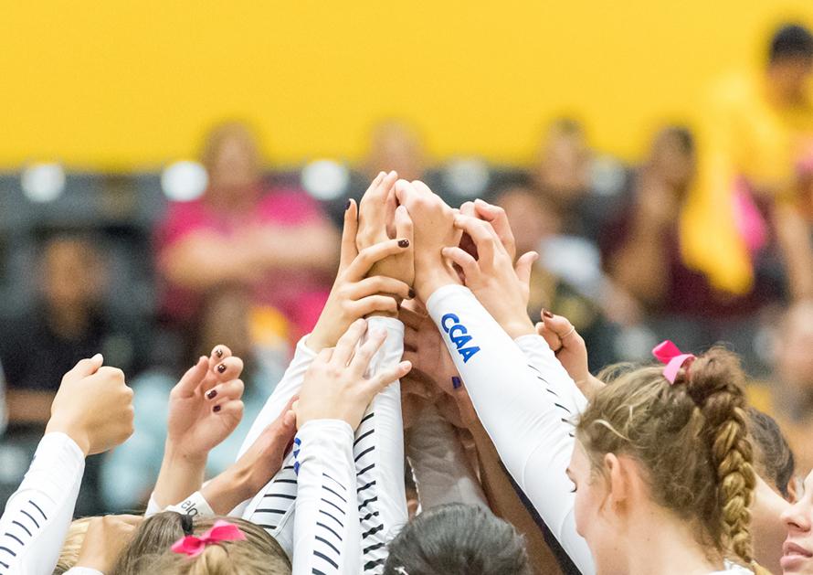 Women's Volleyball team celebrate their success.