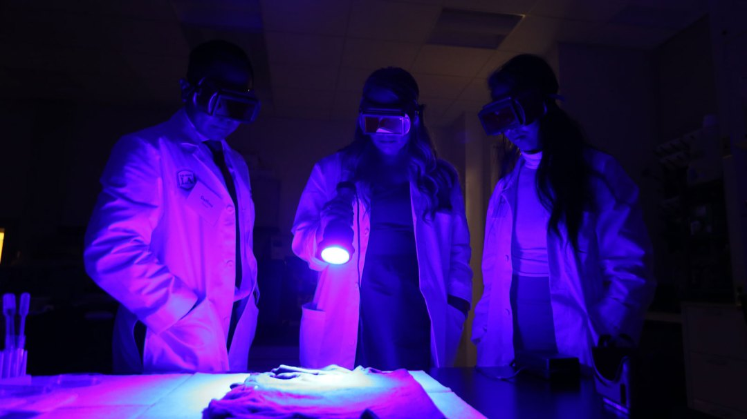 Students demonstrate Luminol tests that reveal previously hidden traces of blood.