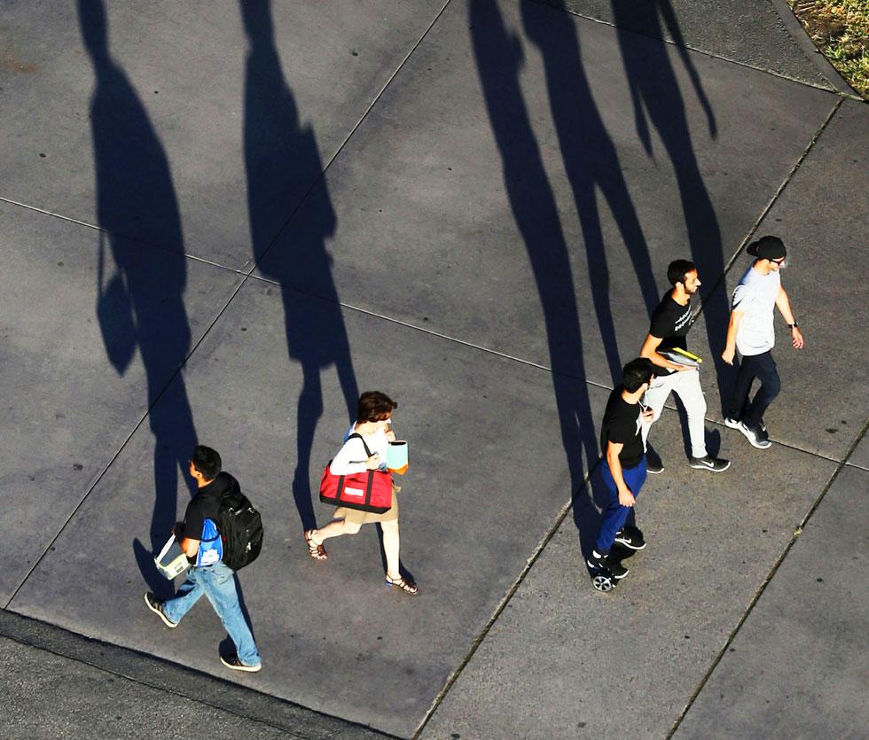 Group walks down main campus walkway casting tall shadows along the way