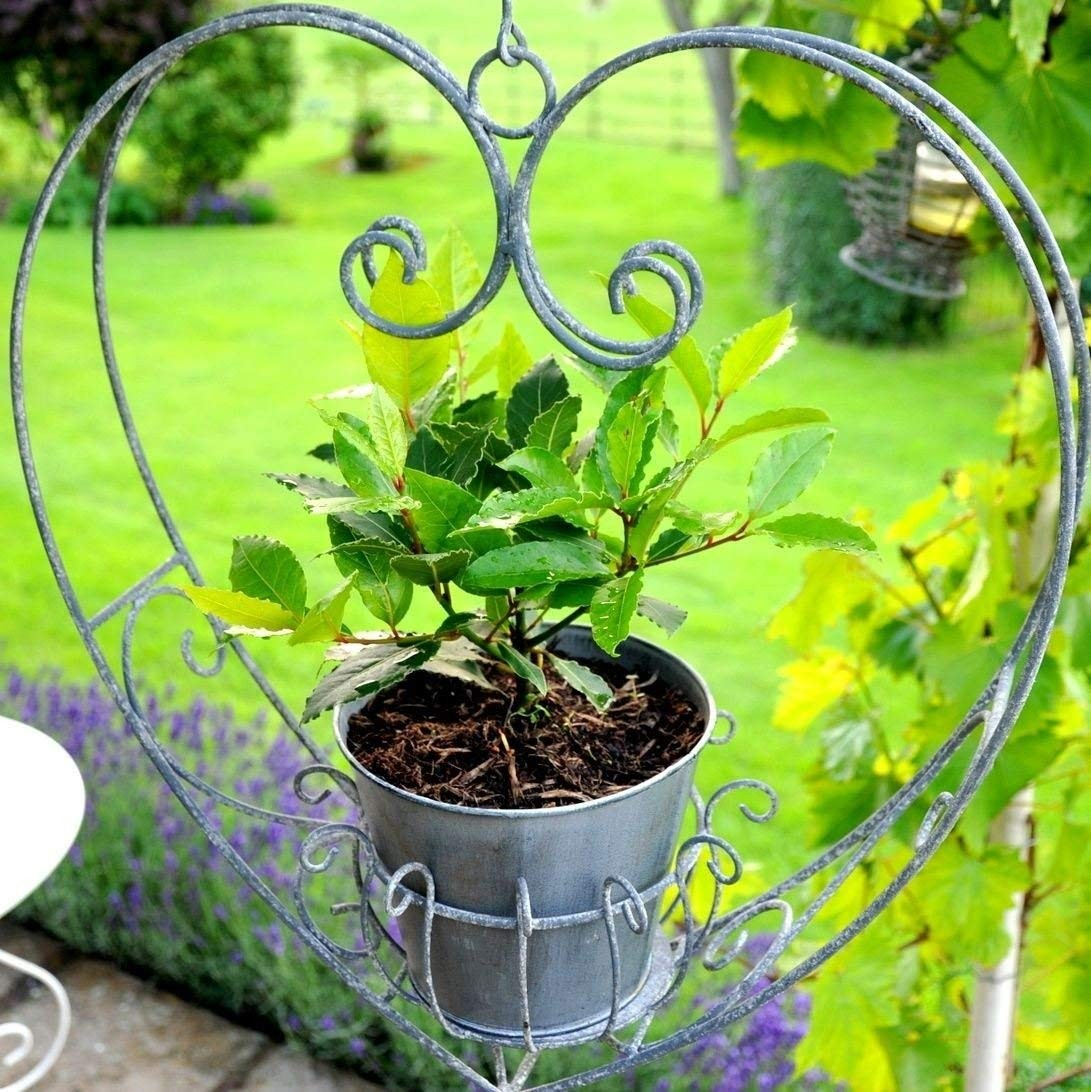 Better Homes And Gardens Flower Pots
