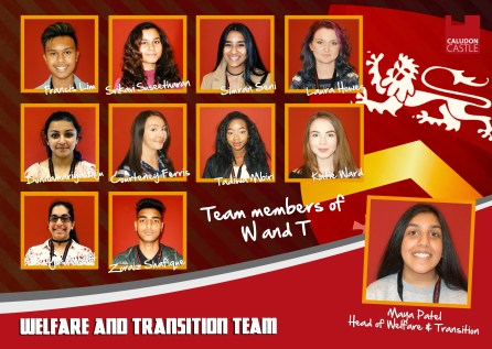 Welfare and Transition Team