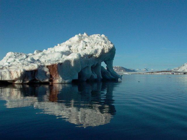 Eisberg im Kongsfjord