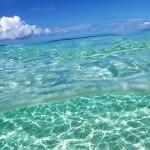 Vacances d'été et News