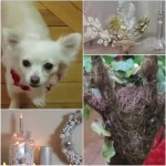 [Video] Vlogmas – Décoration de Noel