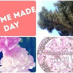 [Vlog] Beautifull Spring – Cosmetic & Soap Home Made World Wide Day