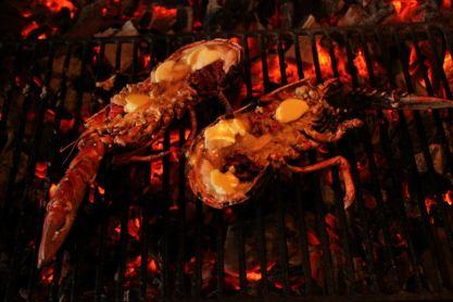 homards grillés beurrés sur feu de bois