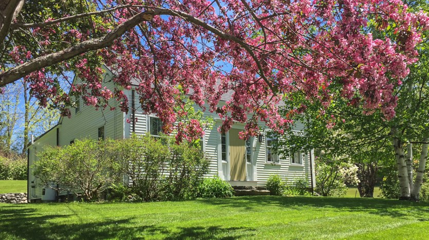 Beauchamp Cottage in spring