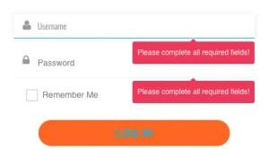 Screenshot of the login form (Member-Portal)