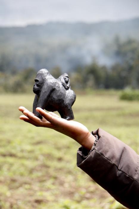 gorilla in Rwanda | Camels & Chocolate