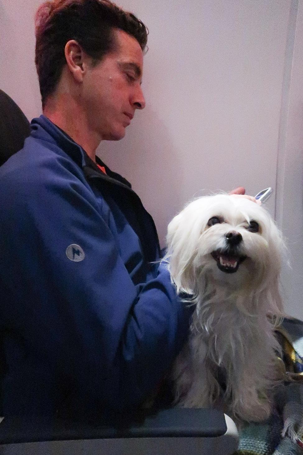 Mazama Moment: Pet-Friendly Travel in the Washington Mountains