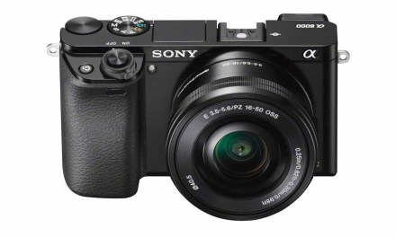 Best cameras for beginners in 2016