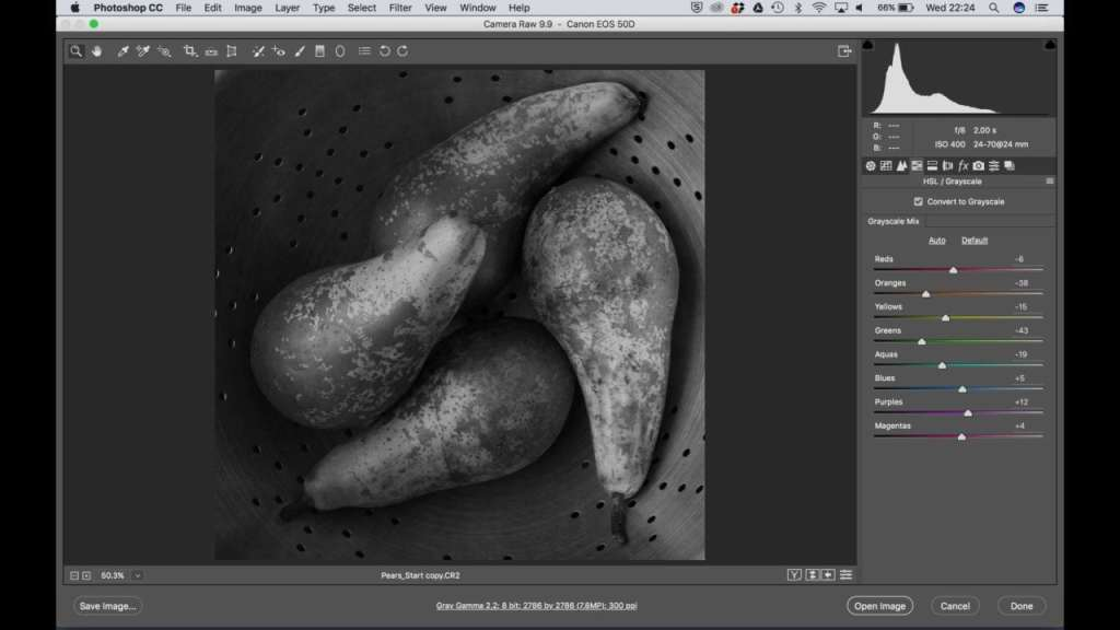 Photoshop monochrome controls