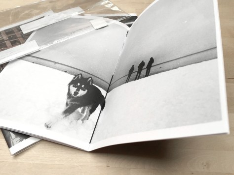 Mike Jarecki - Just Make Pictures