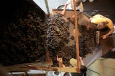 Sorting Clos Electrique Pinot noir